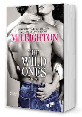 The Wild Ones Book Cover